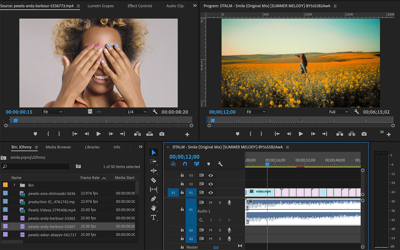 DTALM Smile - Adobe Premiere CC Project